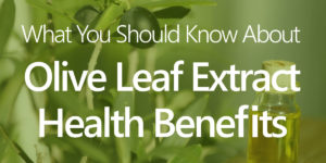 olive leaf extract benefits