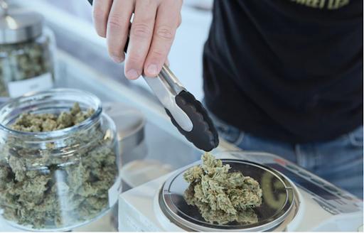 cannabis for stress